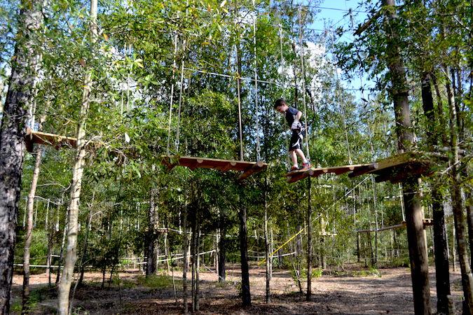 Orlando Tree Trek Share Orlando Attraction P04