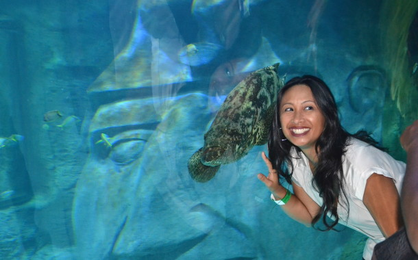 Go Under-The-Sea at Orlando Sea Life Aquarium