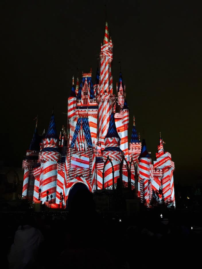 Mickey's Very Merry Christmas Party 2015 10