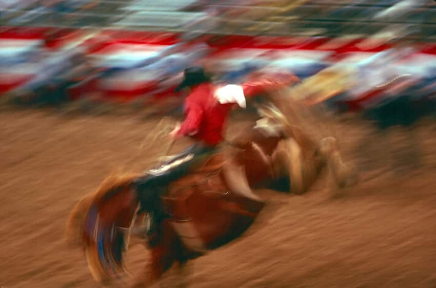 136th Silver Spurs Rodeo ShareOrlando 99