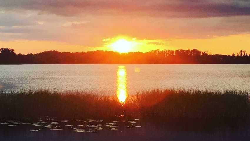 Lake Louisa State Park - 3 Reasons - ShareOrlando 1