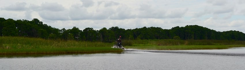 Wild Florida Airboat Tours Wildlife Park - ShareOrlando 6