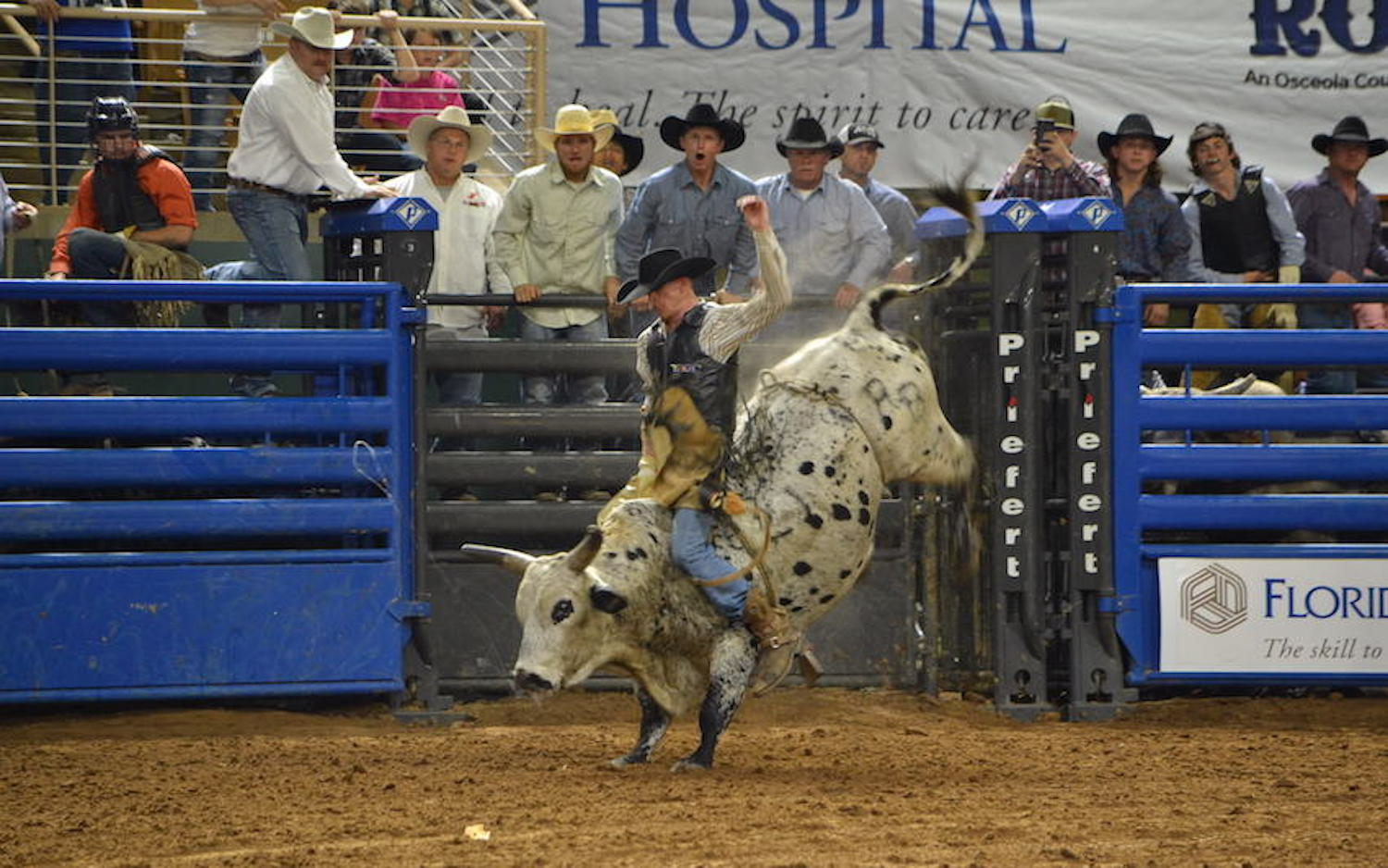 PRCA Rodeo Bull Fighting is Back