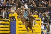 RAM National Circuit Finals Rodeo is back in Kissimmee